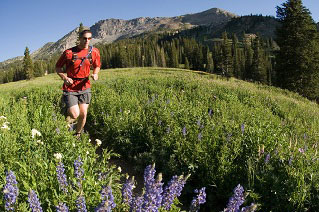 Matt Rink trail running in Albion Basin. Wasatch Mountains, Utah.
